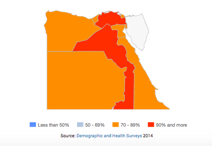 FGM dashboard Egypt